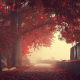 nature, fog, landscapes, fall, autumn, fences, trees, mist, roads, leaves wallpaper