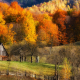 autumn, fall, barns, forest, grass, hill, landscape, tree, colorful, fence, nature wallpaper