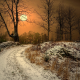 winter, sun, norway, road, tree, nature, dry grass, snow wallpaper