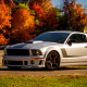 2012 roush 427r ford mustang, car, ford mustang, ford wallpaper