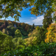 stourhead garden, wiltshire, england, tree, forest, nature wallpaper
