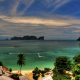 palm tree, tropical, beach, thailand, phi-phi, sea wallpaper