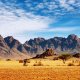 Namibia, Africa, nature, landscape, mountain, clouds, desert, rock, trees, stones, plants wallpaper