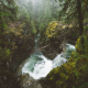 vancouver island, british columbia, canada, nature, forest, river, waterfall, tree wallpaper