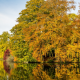 stourhead garden, wiltshire, england, autumn, reflection, tree wallpaper