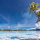eden, french polynesia, beach, palm trees, nature, island, sea, tropical wallpaper