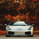 lamborghini gallardo, tree, race cars, autumn, cars wallpaper