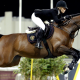 equitation, jumping, horse, horse riding, sport wallpaper