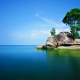 rock, trees, sea, nature, alone, landscape wallpaper