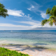 hawaii, tropics, sea, beach, coast, palms, sand, sky, usa, nature wallpaper