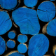 wood, texture wallpaper