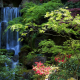usa, garden, waterfall, portland, oregon, nature wallpaper