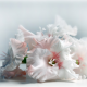 gladiolus, flowers, bouquet wallpaper