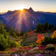 usa, park, mountains, washington state park, fir-tree, bushes, light rays, sun, nature wallpaper