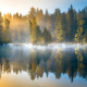 nature, fall, finland, forest, pond, lake, morning, sunrise, fog wallpaper