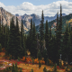 north cascades national park, washington, usa, mountains, forest, autumn, landscape, nature, tree wallpaper
