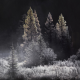 sunrise, autumn, silver in the morning, altai, russia, nature, winter, frost wallpaper