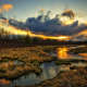 sunset, swamp, dark clouds, grass, nature wallpaper