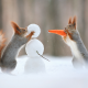 squirrel, carrot, snowman, winter, humor, animals, christmas wallpaper