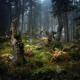 forest, stump, nature, tree wallpaper
