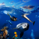 mermaid, underwater, dolphins, coral reef, collage wallpaper