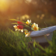 nature, spring, grass, hat, flowers, daffodils, tulips wallpaper