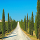 road, italy, cypress, nature, farm,  wallpaper