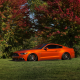 ford mustang, nature, cars, orange cars, ford, ford mustang gt lowered wallpaper