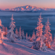 nature, landscape, winter, snow, mountains, slope, tree, sunset, kolyma, russia wallpaper