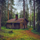 forest, hut, finland, tree wallpaper