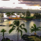 ocean, palm trees, twilight, hawaii, island hilo, usa, nature, palm, sea wallpaper