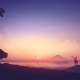 artwork, bear, sunrise, nature, moose, elk, deer wallpaper