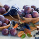 fruit, food, plums, plum wallpaper