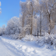 nature, winter, road, house, trees, birches, snow, russia wallpaper