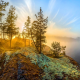 lake ladoga, russia, nature, blue sky, landscape, trees, sky, moss, rocks, lake wallpaper