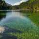 austria, lake, forest, clear water, nature wallpaper