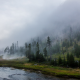 landscape, nature, Yellowstone National Park, forest, river, mist, mountain, trees, grass wallpaper