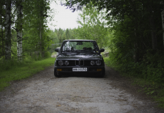BMW E28, Squatty, BMW, car, forest, tree, birch wallpaper