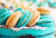 food, macaroons wallpaper