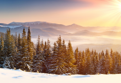 sun rays, snow, snowy peaks, mountains, forests, winter, clear skies, mist wallpaper