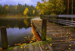 walkway, fall, leaves, nature, lake, forest, tree, water wallpaper