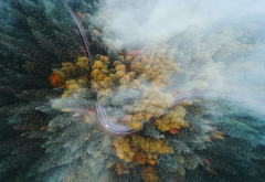 oregon, forest, road, highway, fall, mist, drone, aerial view, tree, nature wallpaper