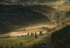 farm, field, trees, hill, landscape, nature, mist, valley, morning, forest wallpaper