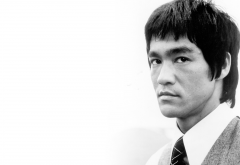 bruce lee, actor, men, face, simple background, portrait, fighting legend wallpaper