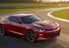 Chevrolet Camaro, Chevrolet, cars wallpaper
