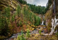 wahclella falls, columbia river gorge, oregon, mountains, waterfall, tree, forest, nature wallpaper