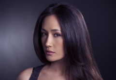 nikita, tv series, actress, brunette, maggie q, movies, women wallpaper