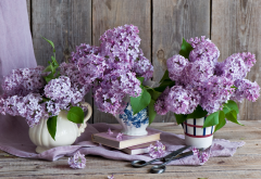 bouquet, lilac, flowers, books, scissors, nature wallpaper