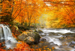 nature, autumn, romania, forest, river, waterfall, tree, leaves, stones wallpaper