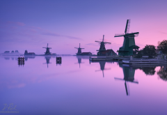 zaanse schans, holland, natherlands, morning, water, fog, windmill, mill wallpaper